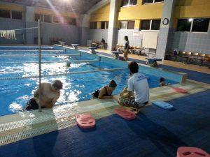 Gruplar İçin Yüzme Eğitimi